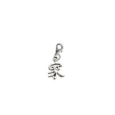 Chinese Family Symbol Charm