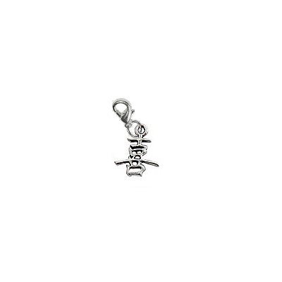 Chinese Happiness Symbol Charm